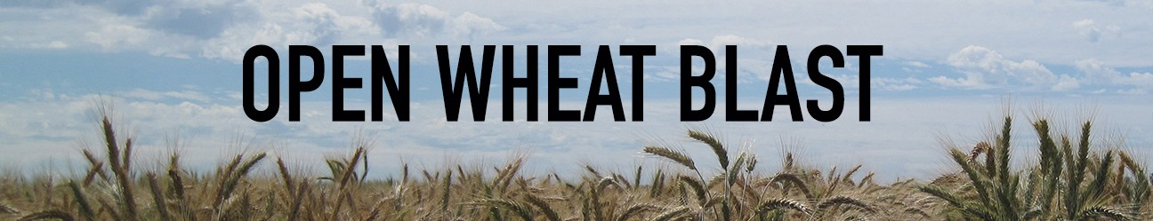 Open Wheat Blast